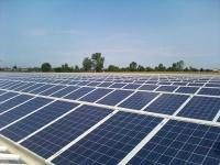 serra con pannelli fotovoltaici